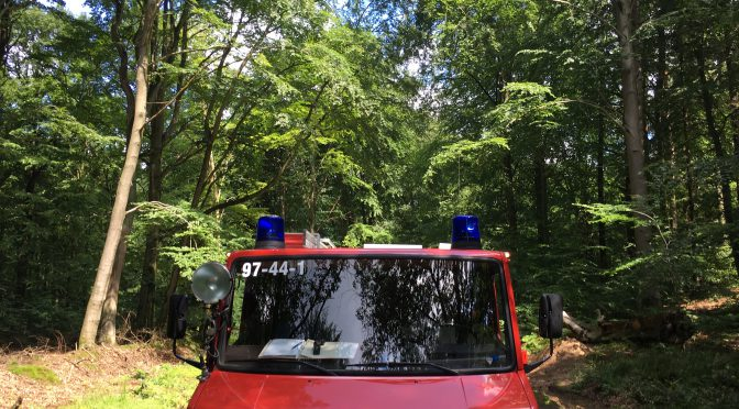 Baum versperrt Straße in der Hahnheide